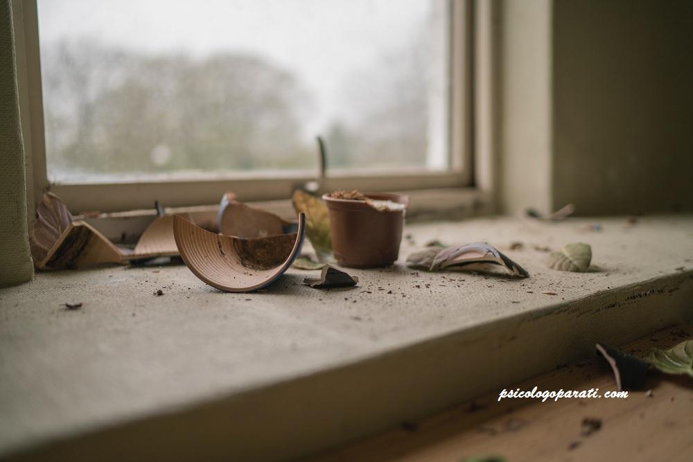 jarrón roto cerca de un ventanal, que ha todo una persona que está pasando por un duelo