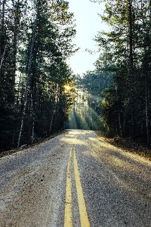 carretera en medio de un bosque con el sol al final de la carretera para eliminar la necesidad emocional en un viaje
