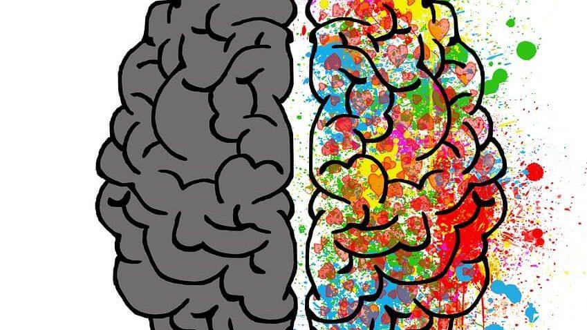 ilustración de dos mitades de cerebro que alude a la consulta de psicólogo online españa